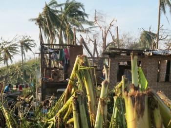 El Tifón Haiyán destruye el 97% de la infraestructura en el norte de Cebu