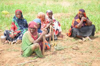 Mujeres: protectoras de la soberanía alimentaria internacional